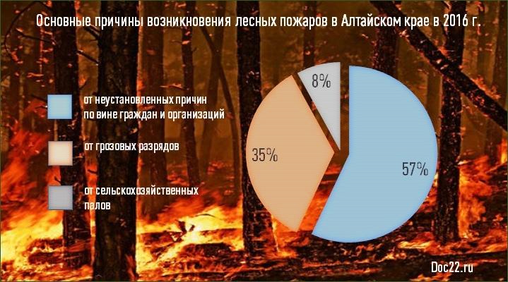 Doc22.ru Основные причины возникновения лесных пожаров в Алтайском крае в 2016 г.